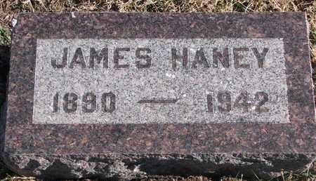HANEY, JAMES - Bon Homme County, South Dakota | JAMES HANEY - South Dakota Gravestone Photos