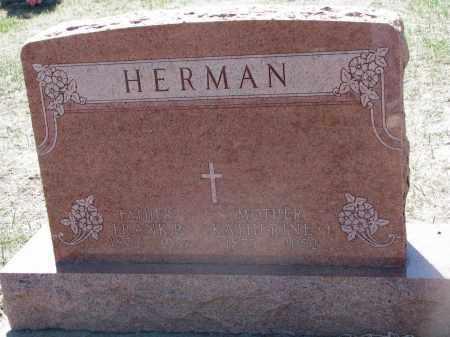 HERMAN, FRANK P. - Bon Homme County, South Dakota | FRANK P. HERMAN - South Dakota Gravestone Photos