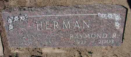 HERMAN, RAYMOND R. - Bon Homme County, South Dakota | RAYMOND R. HERMAN - South Dakota Gravestone Photos