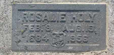 HOLY, ROSALIE - Bon Homme County, South Dakota | ROSALIE HOLY - South Dakota Gravestone Photos