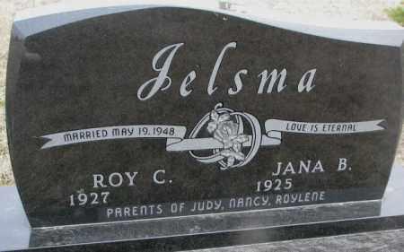 JELSMA, JANA B. - Bon Homme County, South Dakota | JANA B. JELSMA - South Dakota Gravestone Photos