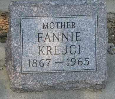 KREJCI, FANNIE - Bon Homme County, South Dakota | FANNIE KREJCI - South Dakota Gravestone Photos