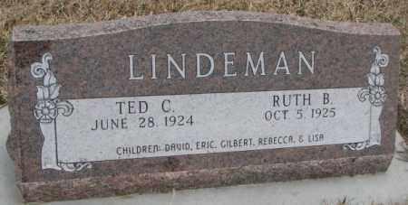 LINDEMAN, TED C. - Bon Homme County, South Dakota | TED C. LINDEMAN - South Dakota Gravestone Photos