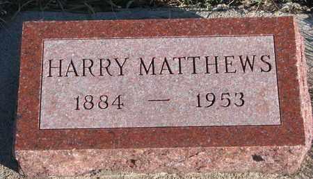 MATTHEWS, HARRY - Bon Homme County, South Dakota | HARRY MATTHEWS - South Dakota Gravestone Photos