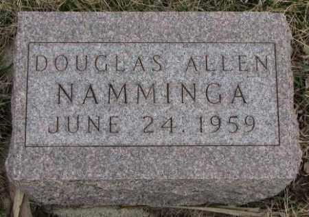 NAMMINGA, DOUGLAS ALLEN - Bon Homme County, South Dakota | DOUGLAS ALLEN NAMMINGA - South Dakota Gravestone Photos
