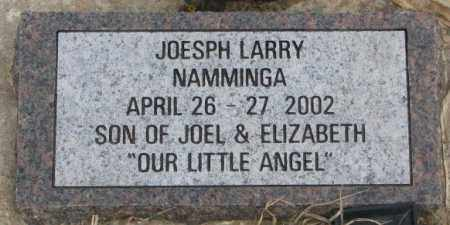 NAMMINGA, JOESPH LARRY - Bon Homme County, South Dakota | JOESPH LARRY NAMMINGA - South Dakota Gravestone Photos