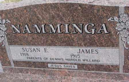 NAMMINGA, JAMES - Bon Homme County, South Dakota   JAMES NAMMINGA - South Dakota Gravestone Photos