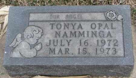 NAMMINGA, TONYA OPAL - Bon Homme County, South Dakota | TONYA OPAL NAMMINGA - South Dakota Gravestone Photos