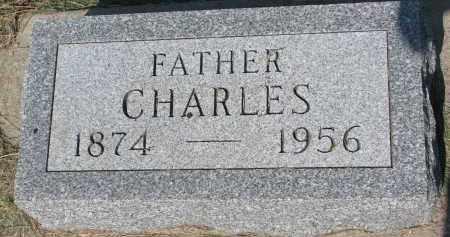 NEDVED, CHARLES - Bon Homme County, South Dakota | CHARLES NEDVED - South Dakota Gravestone Photos