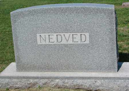 NEDVED, FAMILY STONE - Bon Homme County, South Dakota | FAMILY STONE NEDVED - South Dakota Gravestone Photos