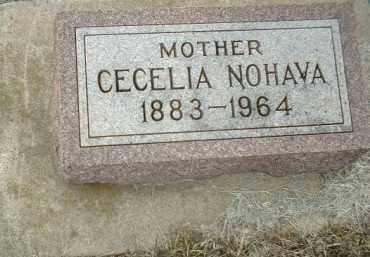 NOHAVA, CECELIA - Bon Homme County, South Dakota   CECELIA NOHAVA - South Dakota Gravestone Photos