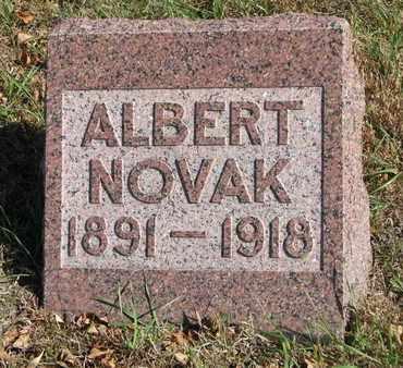 NOVAK, ALBERT - Bon Homme County, South Dakota | ALBERT NOVAK - South Dakota Gravestone Photos