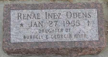 ODENS, RENAE INEZ - Bon Homme County, South Dakota | RENAE INEZ ODENS - South Dakota Gravestone Photos