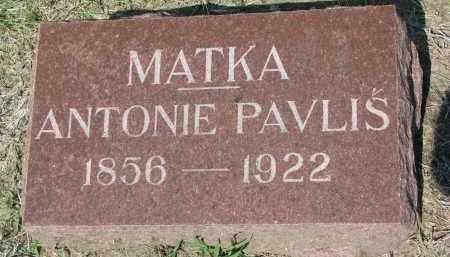 PAVLIS, ANTONIE - Bon Homme County, South Dakota | ANTONIE PAVLIS - South Dakota Gravestone Photos