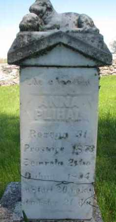 PLIHAL, ANNA - Bon Homme County, South Dakota | ANNA PLIHAL - South Dakota Gravestone Photos