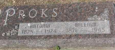 PROKS, ANTONIA - Bon Homme County, South Dakota | ANTONIA PROKS - South Dakota Gravestone Photos