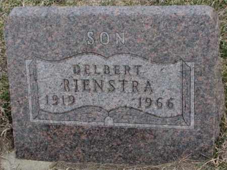 RIENSTRA, DELBERT - Bon Homme County, South Dakota | DELBERT RIENSTRA - South Dakota Gravestone Photos