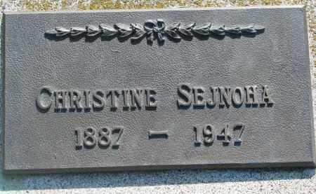 SEJNOHA, CHRISTINE - Bon Homme County, South Dakota | CHRISTINE SEJNOHA - South Dakota Gravestone Photos