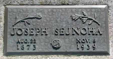 SEJNOHA, JOSEPH - Bon Homme County, South Dakota | JOSEPH SEJNOHA - South Dakota Gravestone Photos
