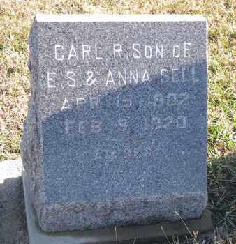 SELL, CARL R. - Bon Homme County, South Dakota   CARL R. SELL - South Dakota Gravestone Photos
