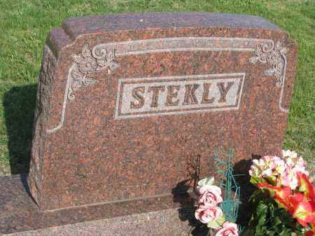 STEKLY, FAMILY STONE - Bon Homme County, South Dakota | FAMILY STONE STEKLY - South Dakota Gravestone Photos