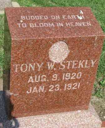 STEKLY, TONY W. - Bon Homme County, South Dakota | TONY W. STEKLY - South Dakota Gravestone Photos