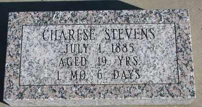 STEVENS, CHARESE - Bon Homme County, South Dakota | CHARESE STEVENS - South Dakota Gravestone Photos