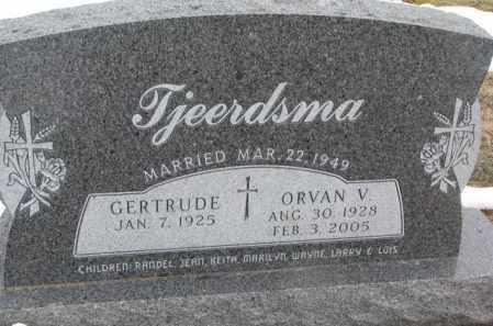 TJEERDSMA, ORVAN V. - Bon Homme County, South Dakota | ORVAN V. TJEERDSMA - South Dakota Gravestone Photos