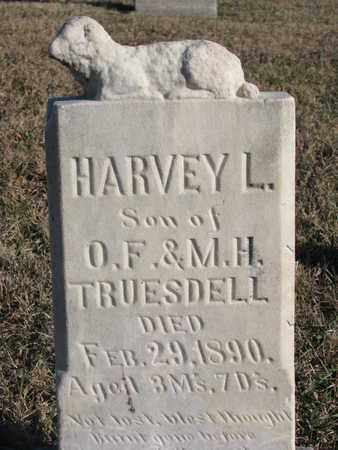 TRUESDELL, HARVEY L. - Bon Homme County, South Dakota   HARVEY L. TRUESDELL - South Dakota Gravestone Photos
