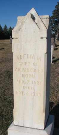 VAN CUREN, ADELIA M. - Bon Homme County, South Dakota   ADELIA M. VAN CUREN - South Dakota Gravestone Photos