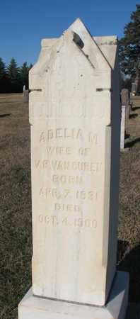 VAN CUREN, ADELIA M. - Bon Homme County, South Dakota | ADELIA M. VAN CUREN - South Dakota Gravestone Photos