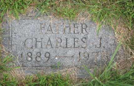 VELLEK, CHARLES J. - Bon Homme County, South Dakota | CHARLES J. VELLEK - South Dakota Gravestone Photos