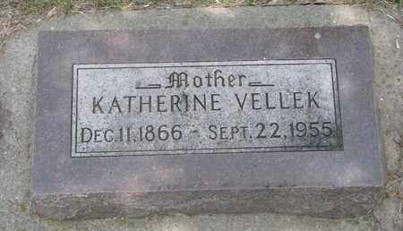 VELLEK, KATHERINE - Bon Homme County, South Dakota | KATHERINE VELLEK - South Dakota Gravestone Photos