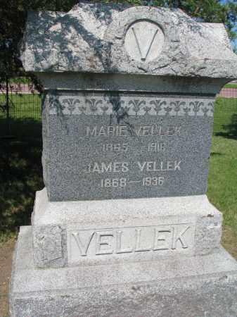 VELLEK, MARIE - Bon Homme County, South Dakota | MARIE VELLEK - South Dakota Gravestone Photos