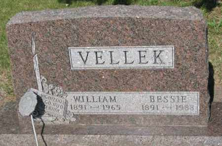 VELLEK, WILLIAM - Bon Homme County, South Dakota | WILLIAM VELLEK - South Dakota Gravestone Photos