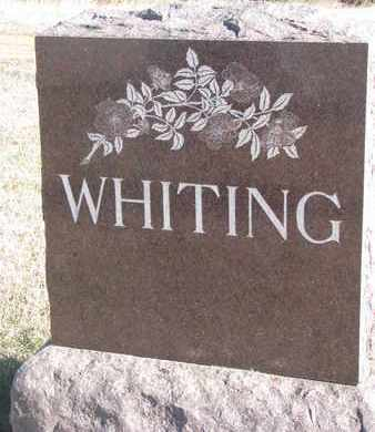 WHITING, FAMILY STONE - Bon Homme County, South Dakota | FAMILY STONE WHITING - South Dakota Gravestone Photos