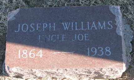 WILLIAMS, JOSEPH - Bon Homme County, South Dakota | JOSEPH WILLIAMS - South Dakota Gravestone Photos