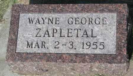 ZAPLETAL, WAYNE GEORGE - Bon Homme County, South Dakota | WAYNE GEORGE ZAPLETAL - South Dakota Gravestone Photos