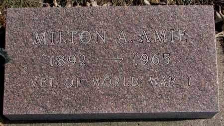 AMIE, MILTON A. - Brookings County, South Dakota | MILTON A. AMIE - South Dakota Gravestone Photos