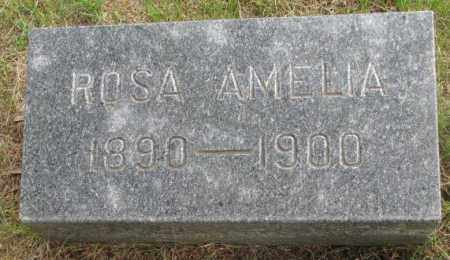 ANDERSON, ROSA AMELIA - Charles Mix County, South Dakota | ROSA AMELIA ANDERSON - South Dakota Gravestone Photos