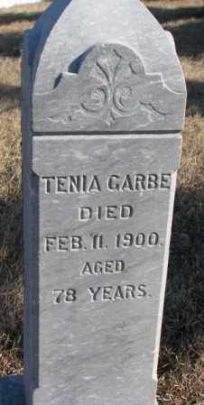 GARBE, TENIA - Charles Mix County, South Dakota | TENIA GARBE - South Dakota Gravestone Photos