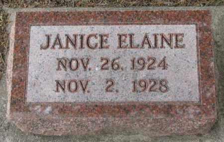 SKVARIL, JANICE ELAINE - Charles Mix County, South Dakota | JANICE ELAINE SKVARIL - South Dakota Gravestone Photos