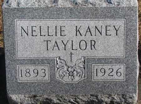 KANEY TAYLOR, NELLIE - Charles Mix County, South Dakota   NELLIE KANEY TAYLOR - South Dakota Gravestone Photos