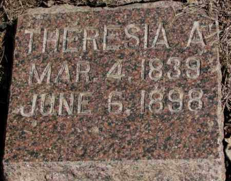 ADAMS, THERESIA A. - Clay County, South Dakota | THERESIA A. ADAMS - South Dakota Gravestone Photos
