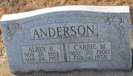 ANDERSON, CARRIE M. - Clay County, South Dakota | CARRIE M. ANDERSON - South Dakota Gravestone Photos