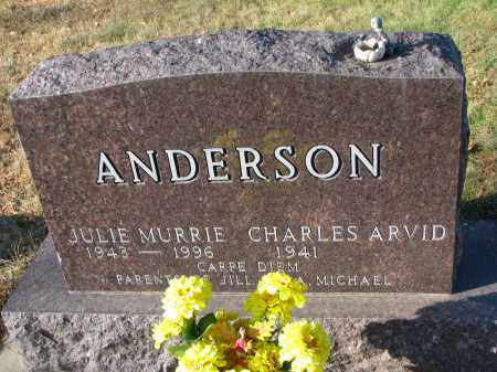 ANDERSON, CHARLES ARVID - Clay County, South Dakota | CHARLES ARVID ANDERSON - South Dakota Gravestone Photos