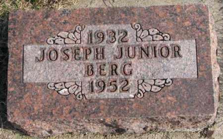 BERG, JOSEPH JUNIOR - Clay County, South Dakota | JOSEPH JUNIOR BERG - South Dakota Gravestone Photos