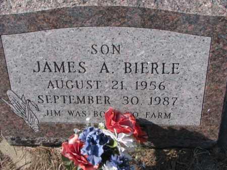 BIERLE, JAMES A. - Clay County, South Dakota | JAMES A. BIERLE - South Dakota Gravestone Photos