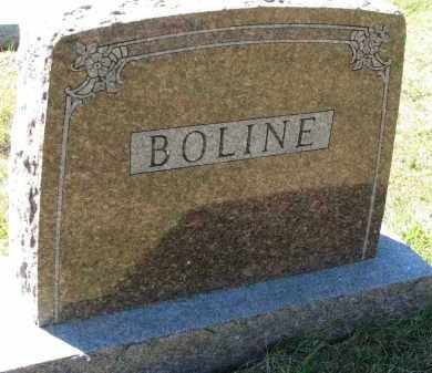 BOLINE, FAMILY STONE - Clay County, South Dakota | FAMILY STONE BOLINE - South Dakota Gravestone Photos