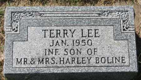 BOLINE, TERRY LEE - Clay County, South Dakota | TERRY LEE BOLINE - South Dakota Gravestone Photos